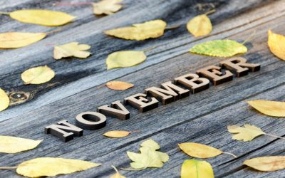 Welcome to the November issue of my newsletter.