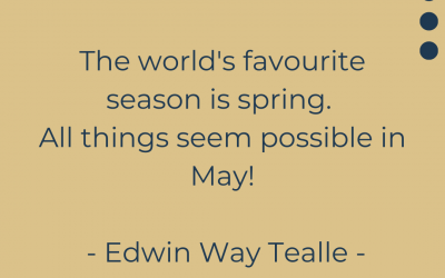 All Things Seem Possible in May!